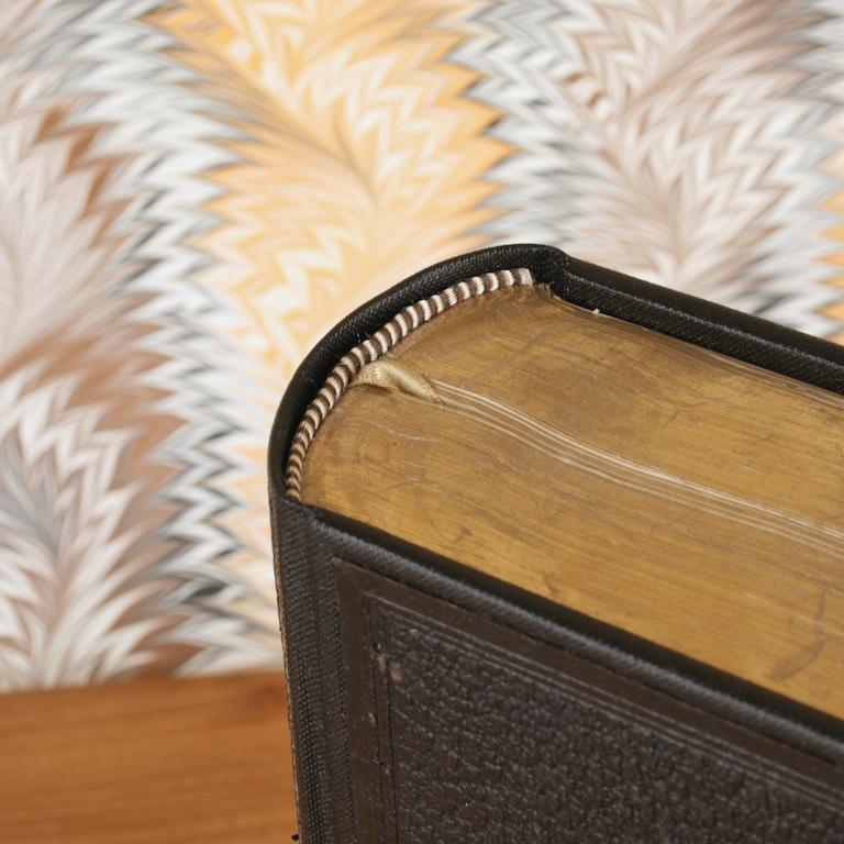 Restored book spine.jpg