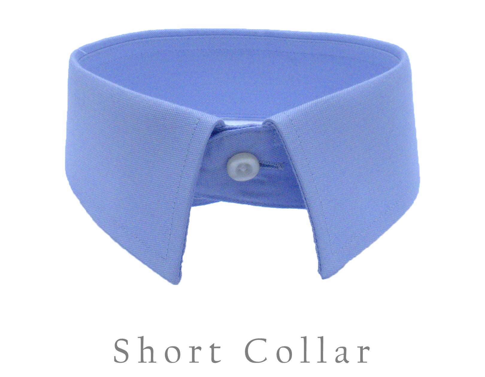 Short Collar.jpg