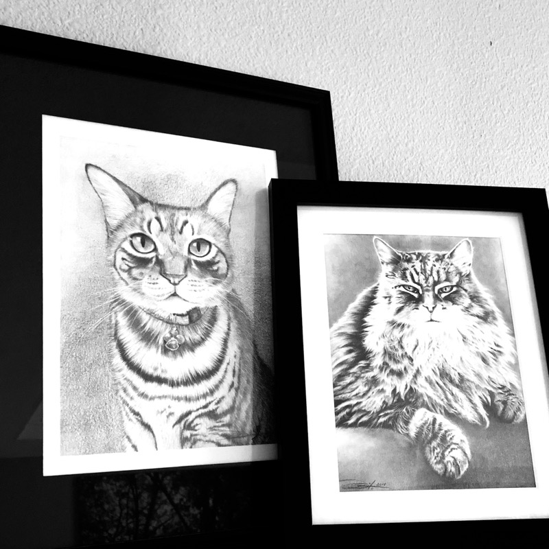 LINK mentioned in episode: animal portrait artist Myra Naito ( @mnaitodesigns1 ) on Instagram