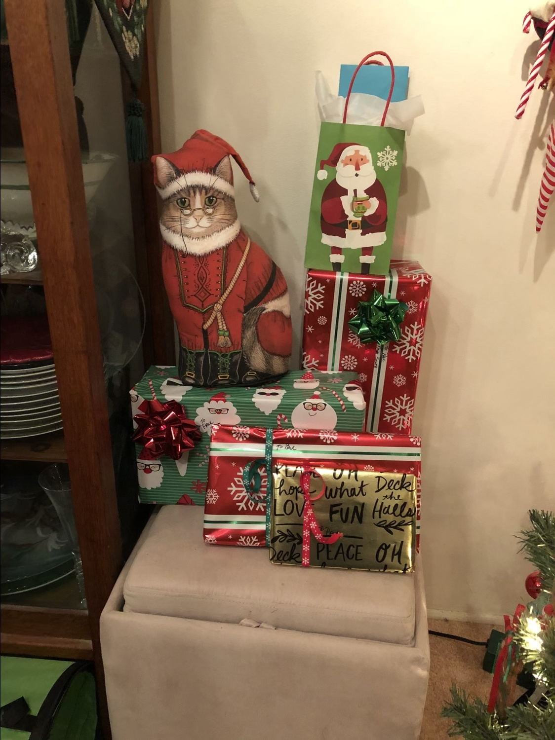 the Santa cat pillow sees you when you're sleeping…