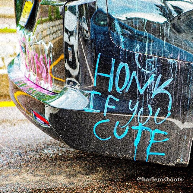"""Honk if you cute."" Life can be pretty gritty and grimy, and this made me smile! #honk #streetshots #harlemshoots #fullcolor #sonya7iii #canon2470mm #metabonesadapter #hybridshooter #whenisitart #everyharlemday #tagafriend"