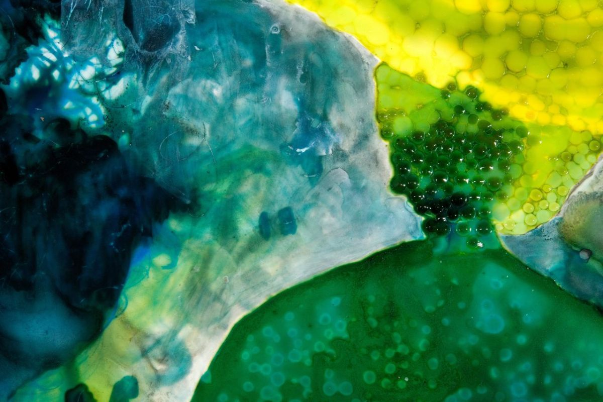 Swamp Sister, detail 2010 ink and acrylic on mylar 42 by 32 inches