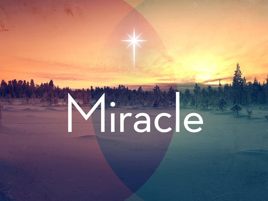 Miracle- Winter 2014