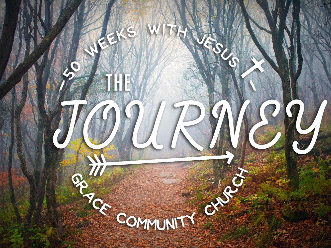 The Journey- Fall 2015 through Summer 2016