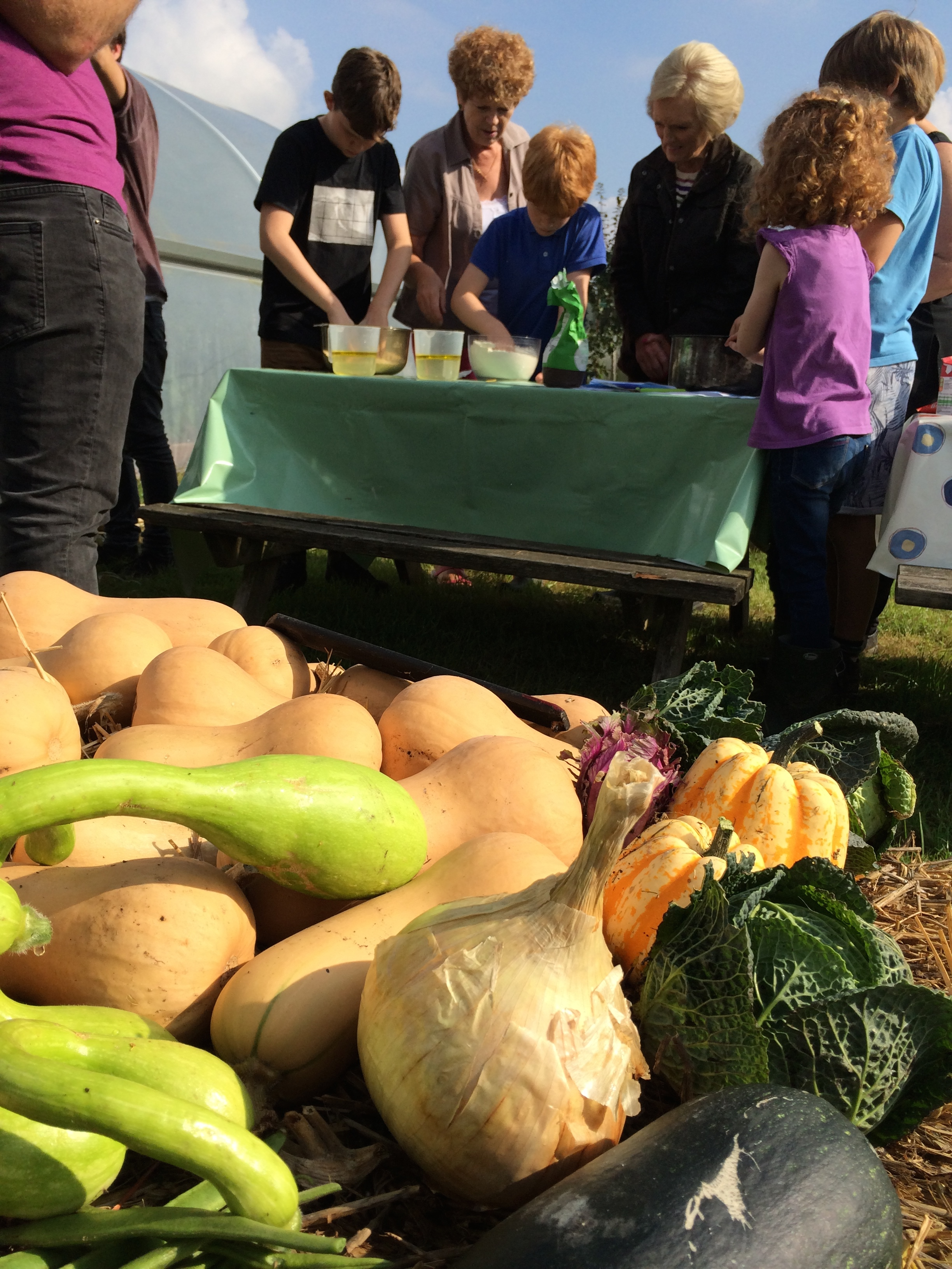 Our home-grown squash at our Community Garden, inspiring cooking!