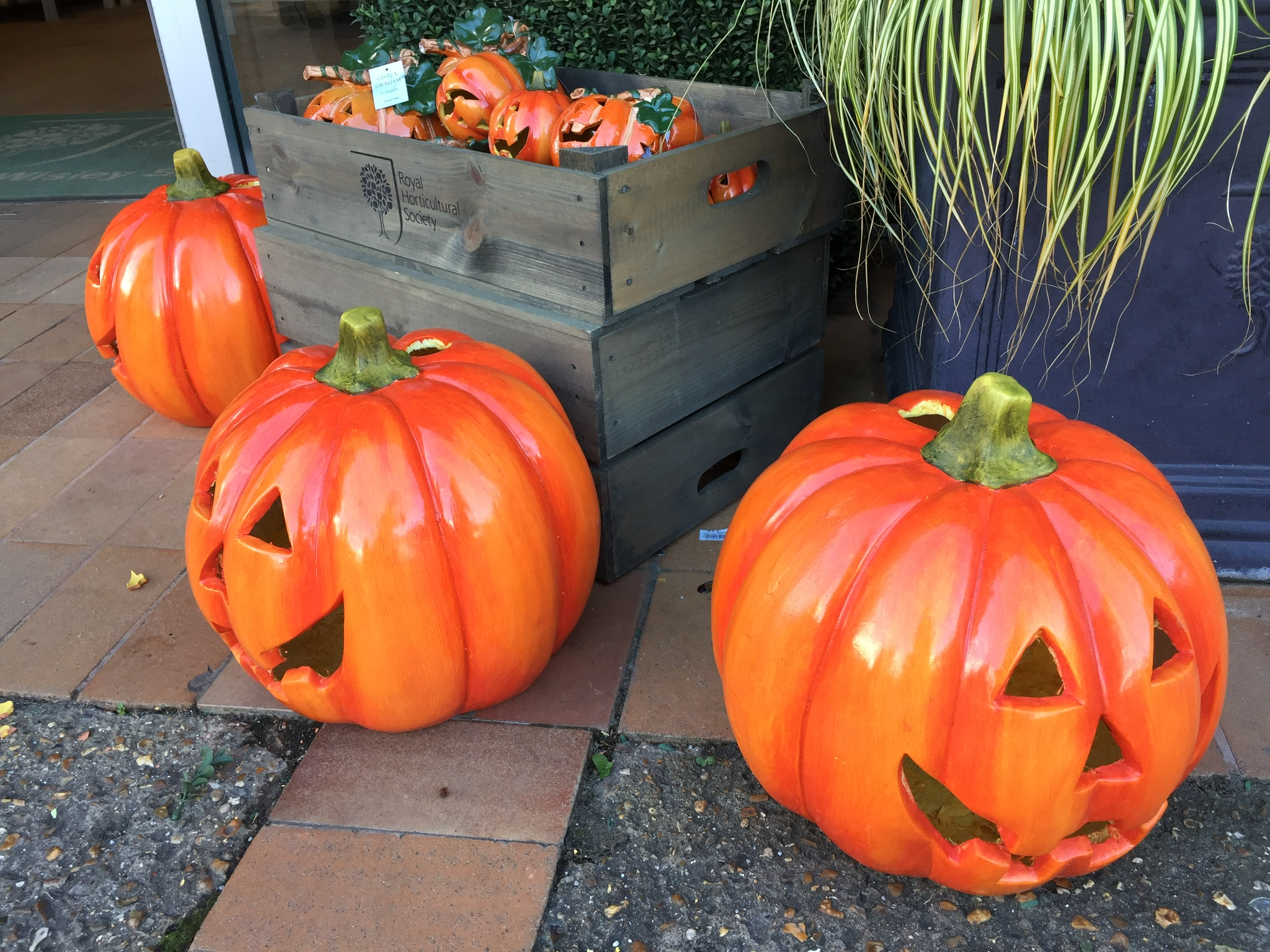 The inspiration for this blog - plastic pumpkins at RHS Wisley