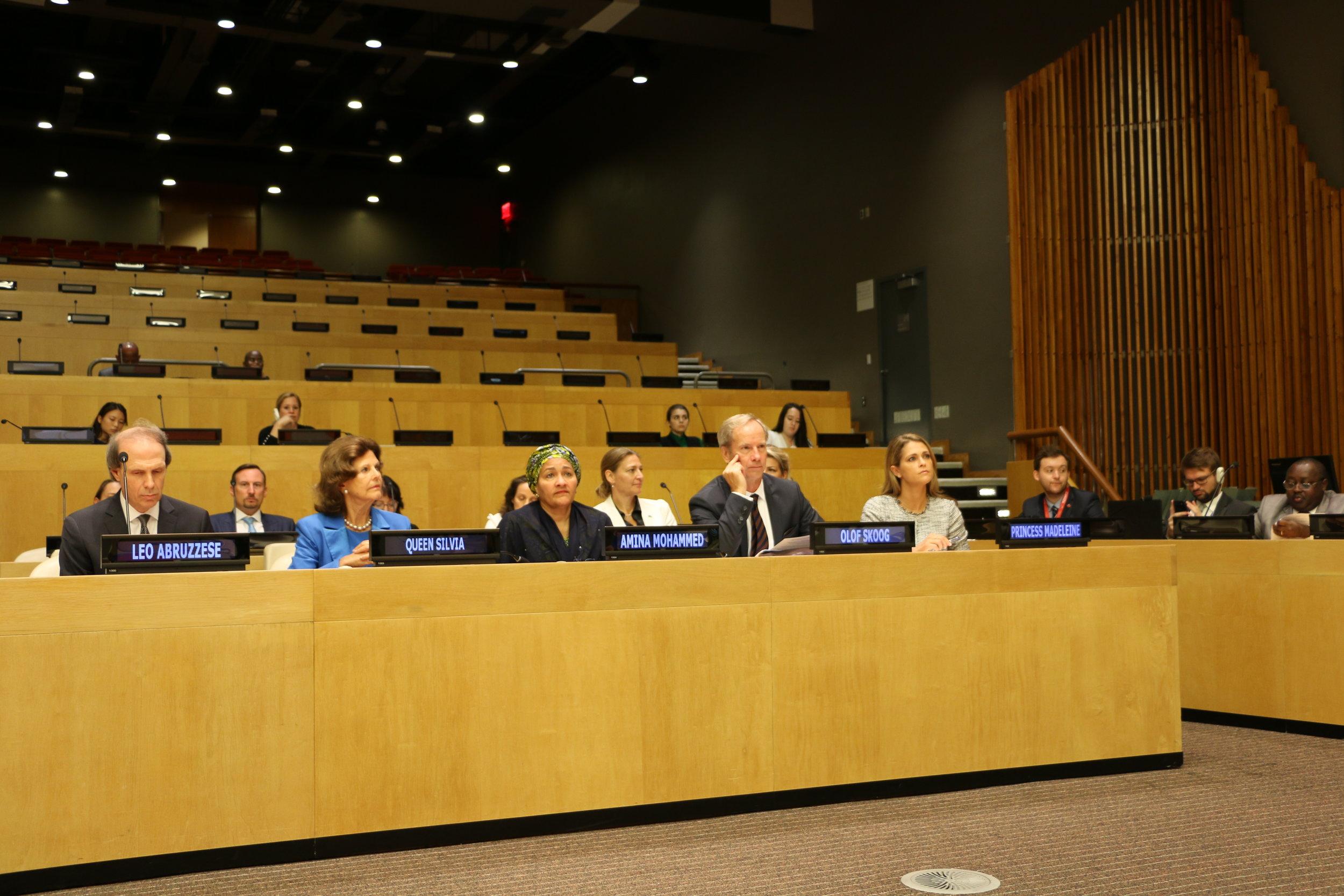 Images UN Hight Level Meeting 2.JPG