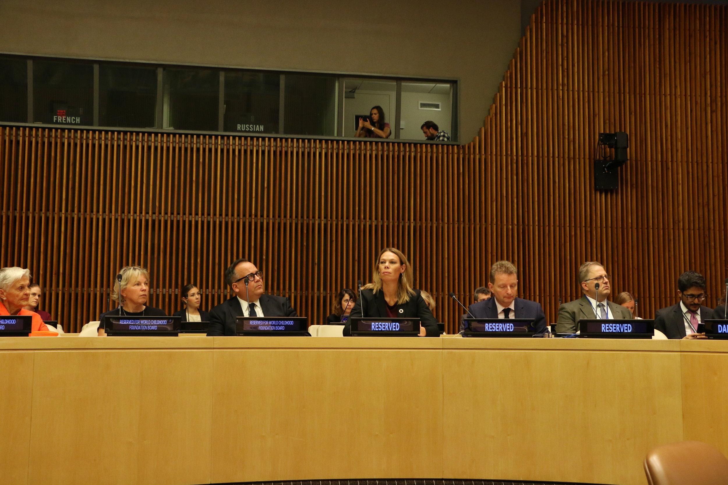 Images UN High Level Meeting.JPG