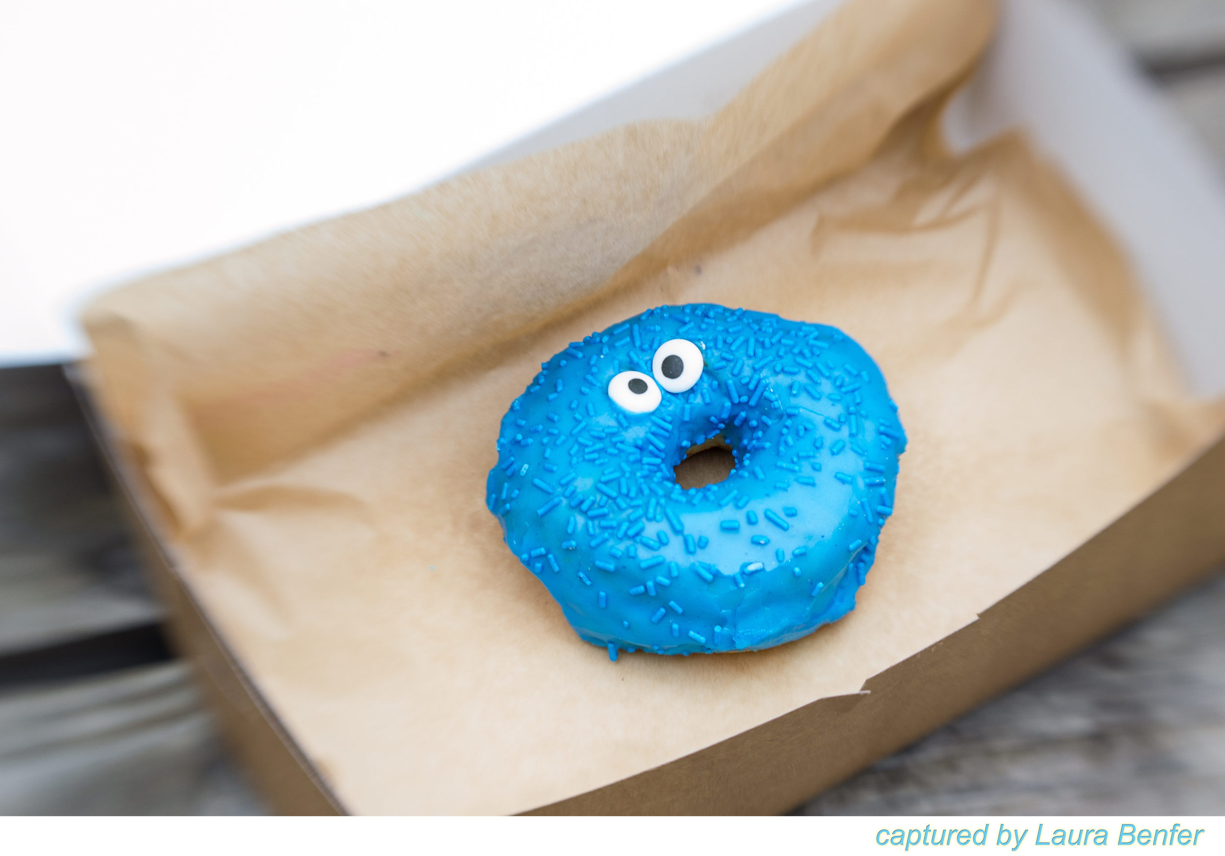 Cookie Monster-2.jpg