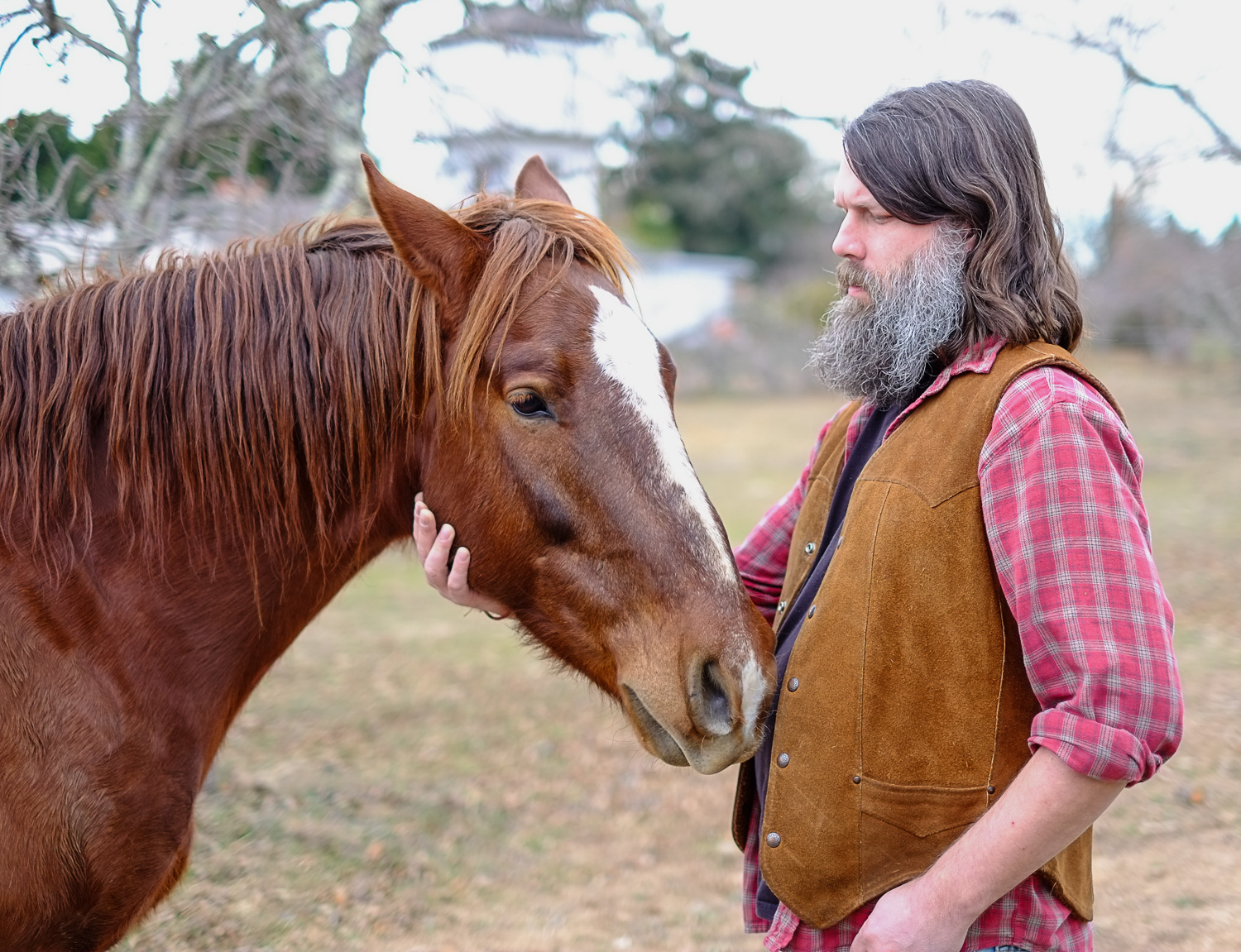bearded man with a horse