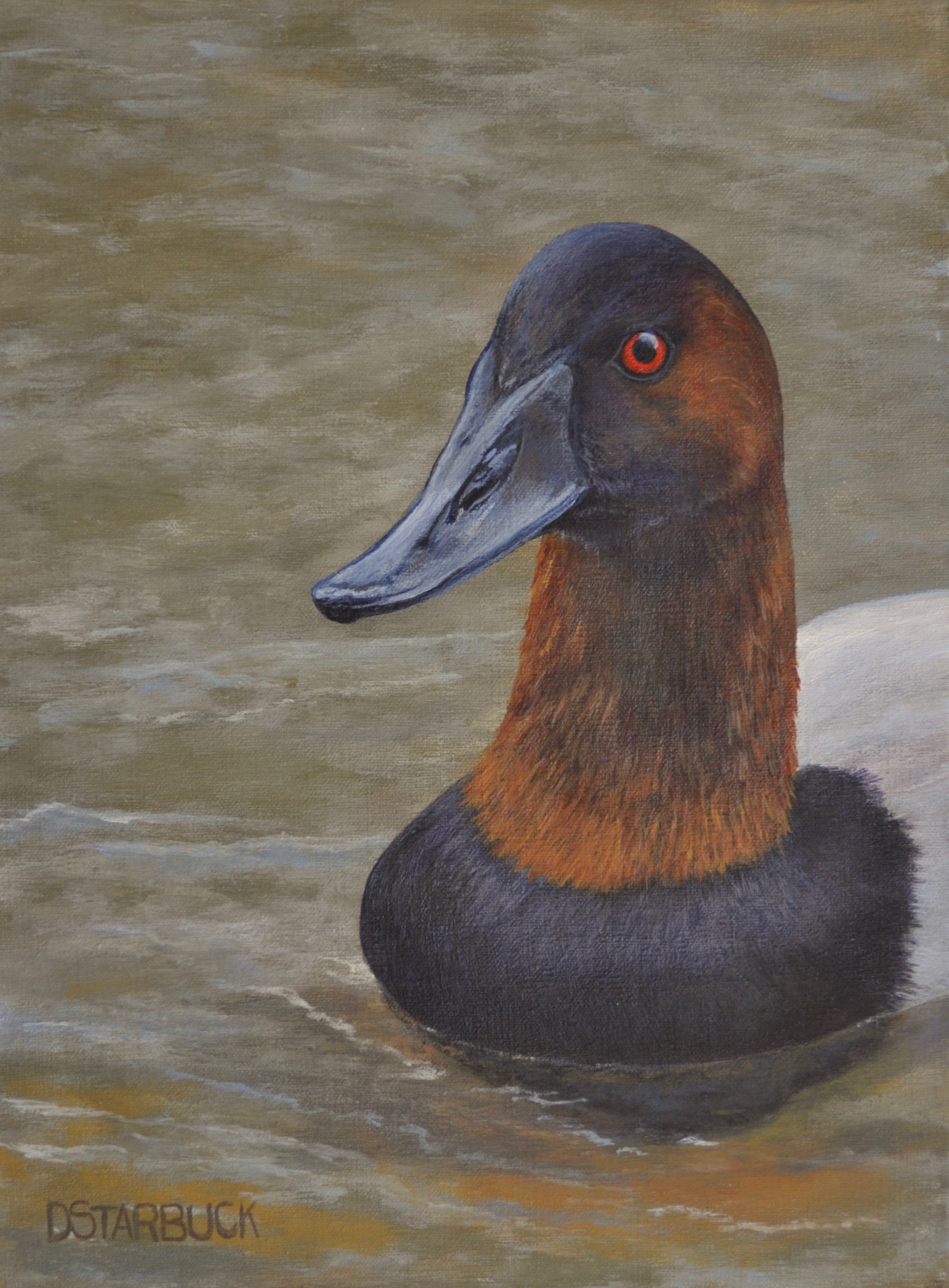 """Mr. Canvasback"" (SOLD)  Original: Acrylic on Linen, 9"" x 12"""