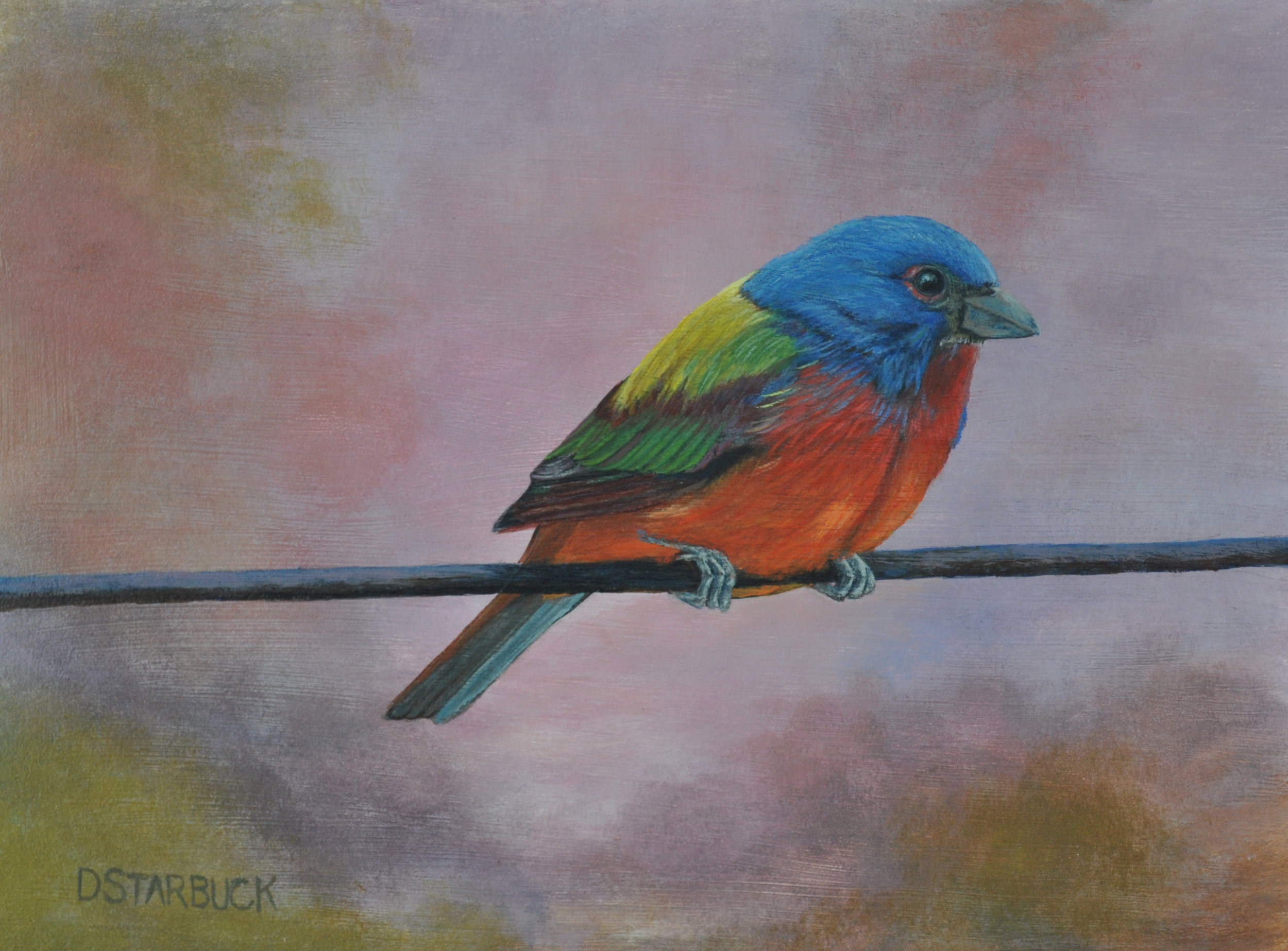 """Painted A Bunting"" (SOLD)  Original: Acrylic on Linen, 9"" x 12"""