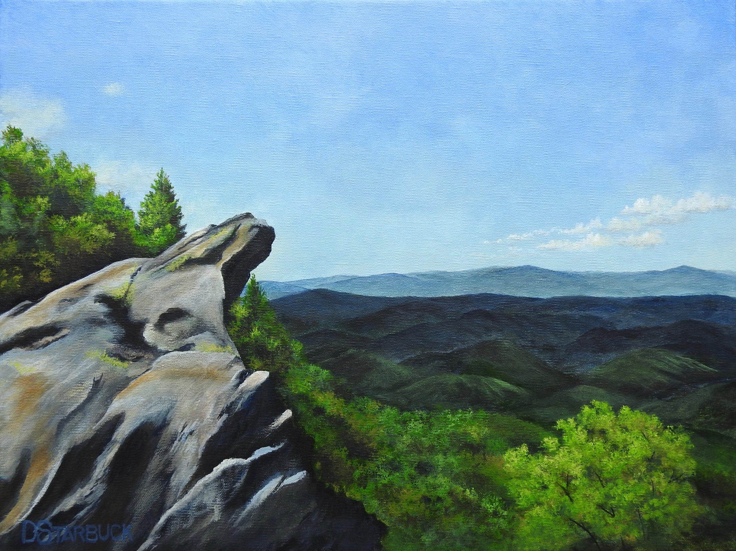 """View Made in NC, Blowing Rock"" North Carolina  Original: 16"" x 12"""