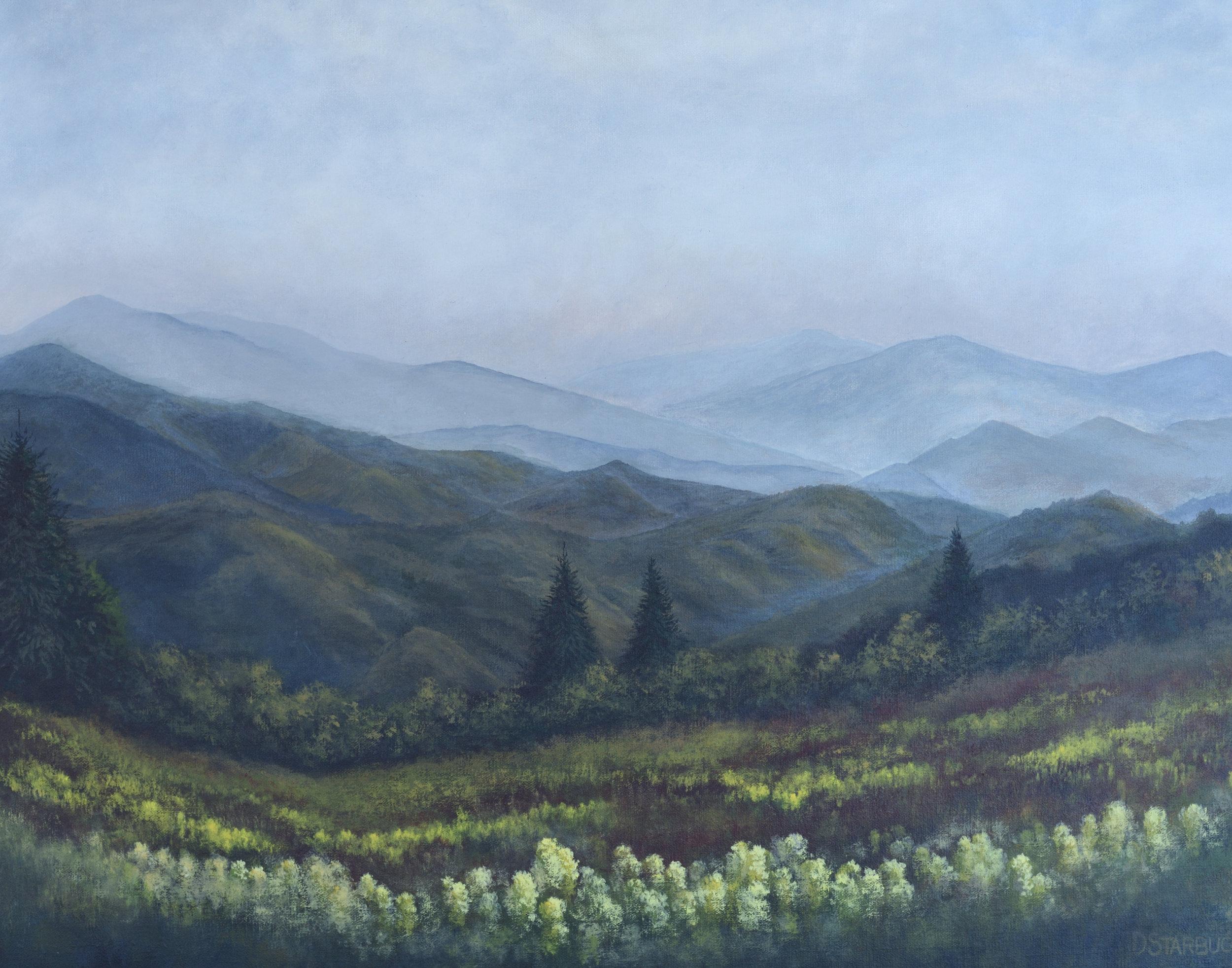 """Peace"" Blue Ridge Parkway, North Carolina  Original: Acrylic on Linen, 24"" x 18"""