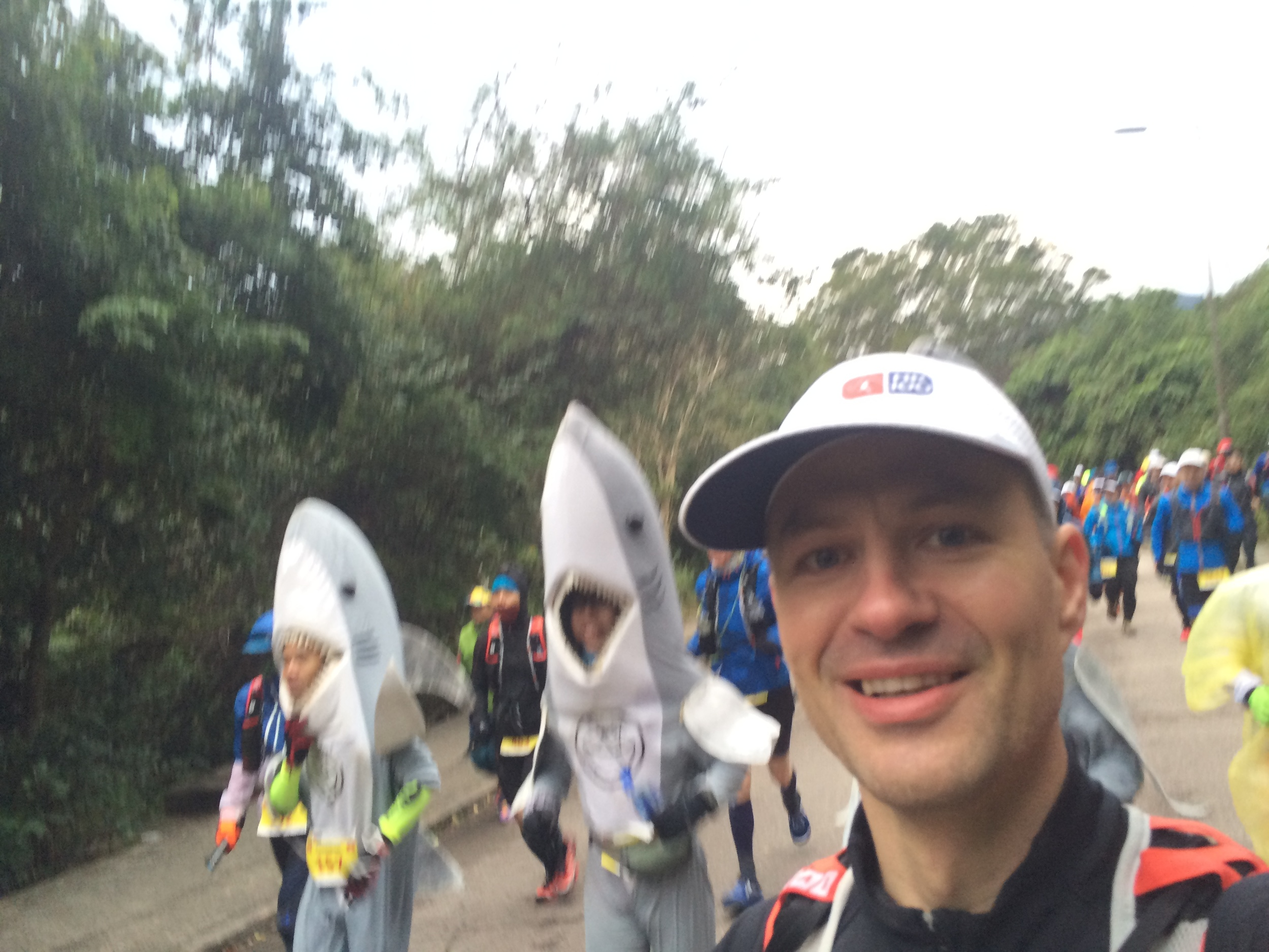 Running with the sharks!