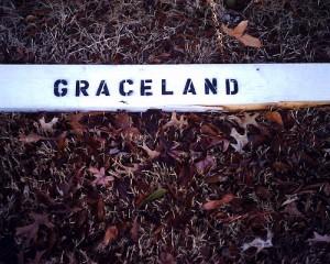 Graceland underfoot