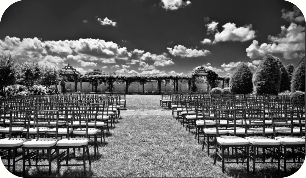 chivari chairs lined up for an outdoor ceremony