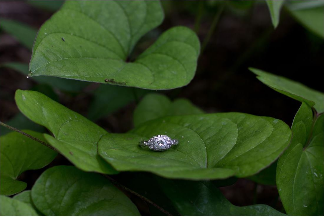 wedding ring leaf greenery
