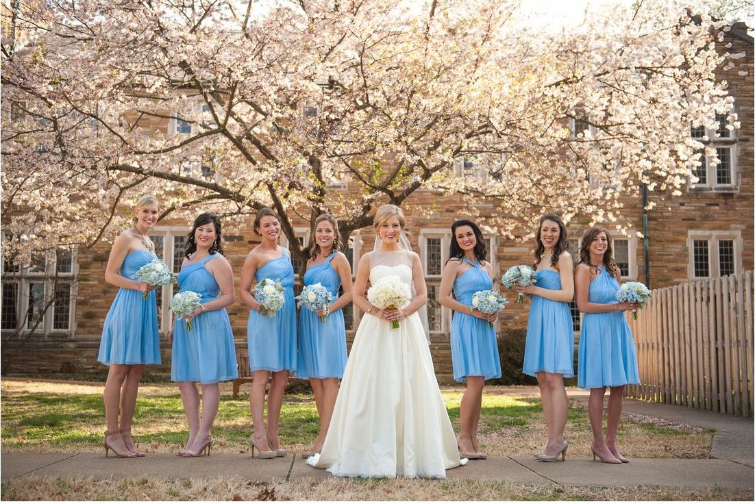 bride with bridesmaids blue dresses spring cherry tree blossoms