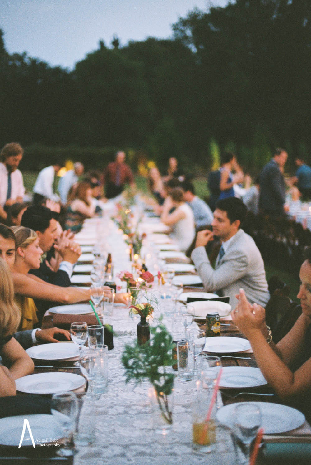 guests seated at long tables