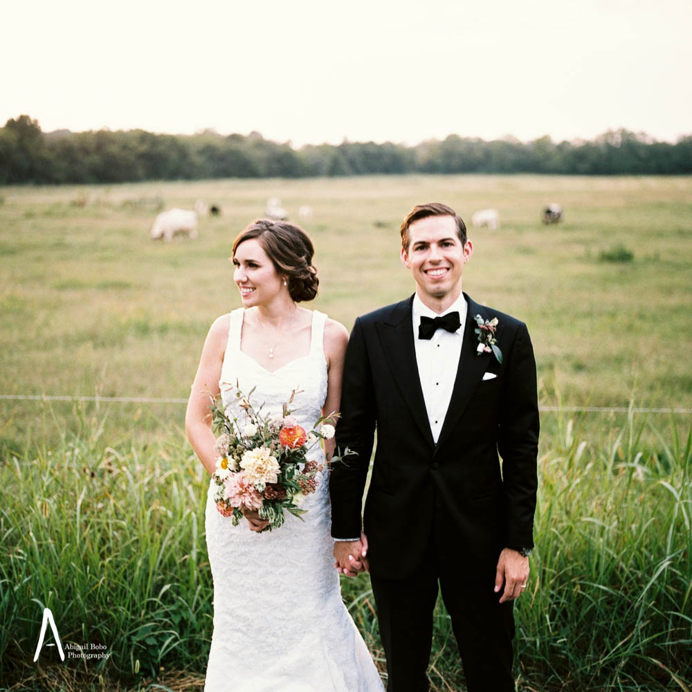bride and groom standing in front of a pasture with cows. wildflower bouquet