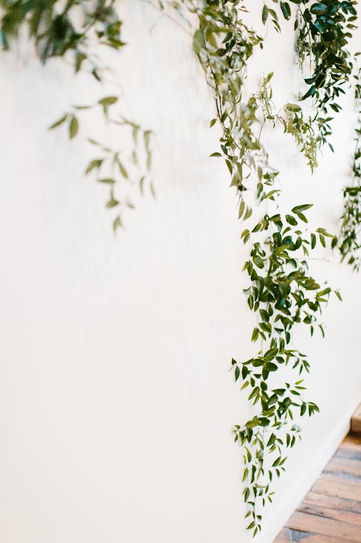 greenery wall.jpeg