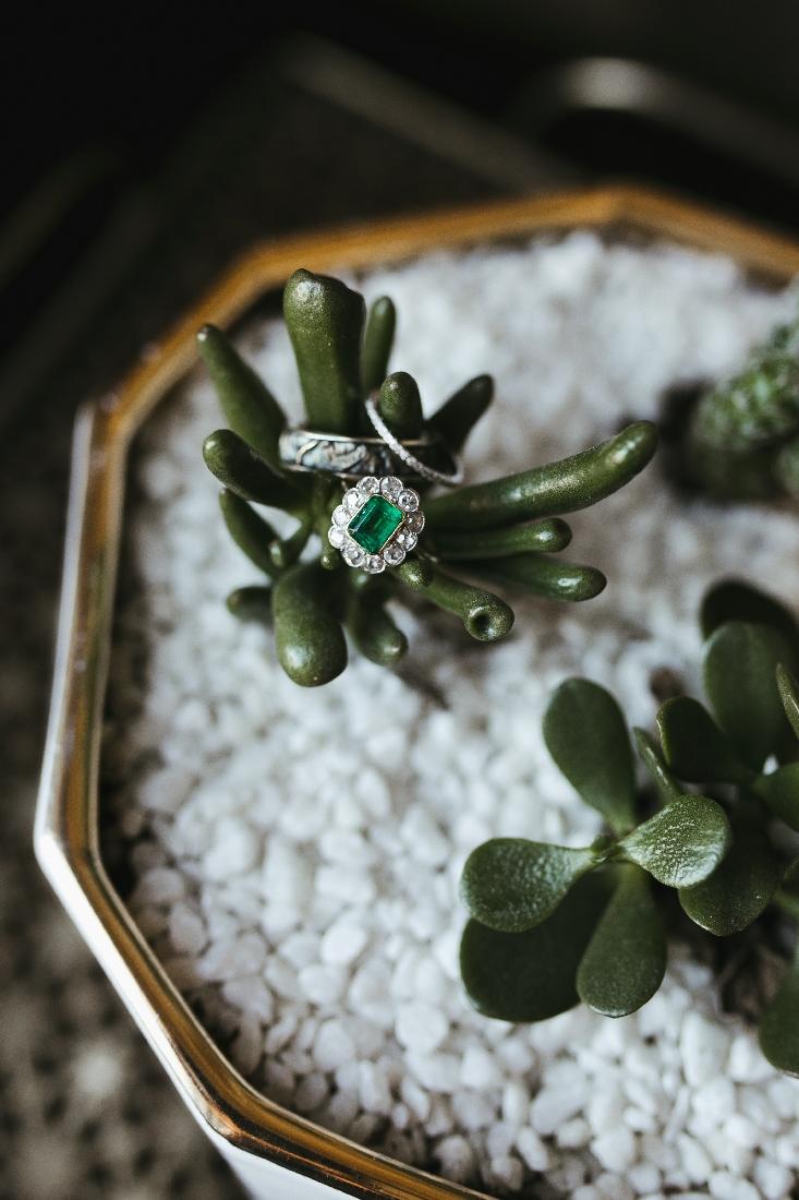 wedding rings succulents.jpeg