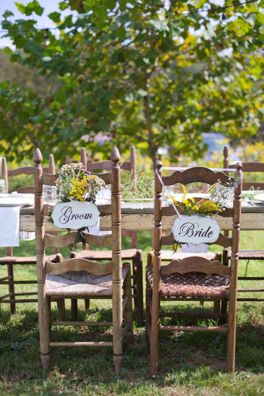 bride and groom chairs.jpg