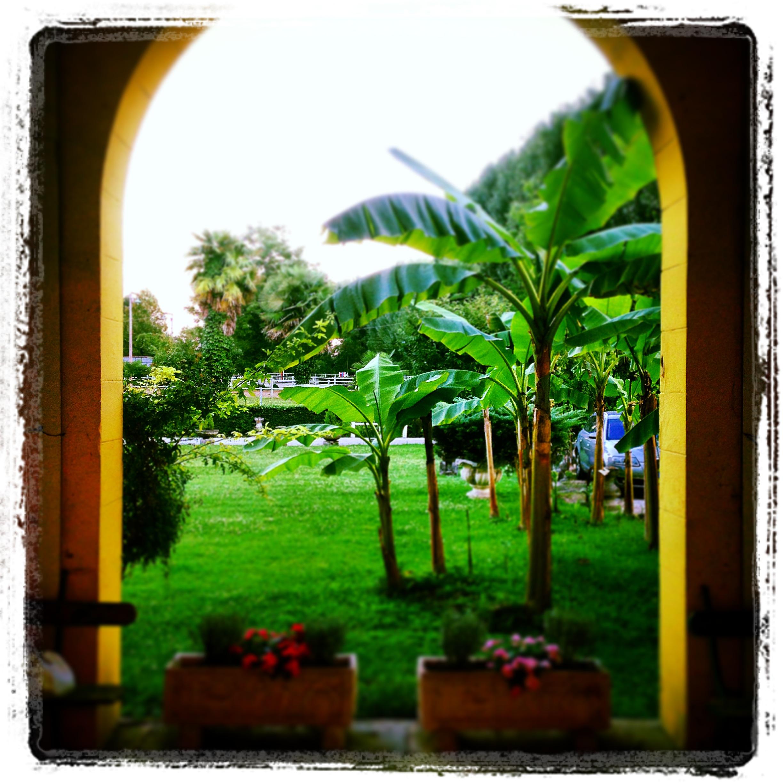 Vista dal portico
