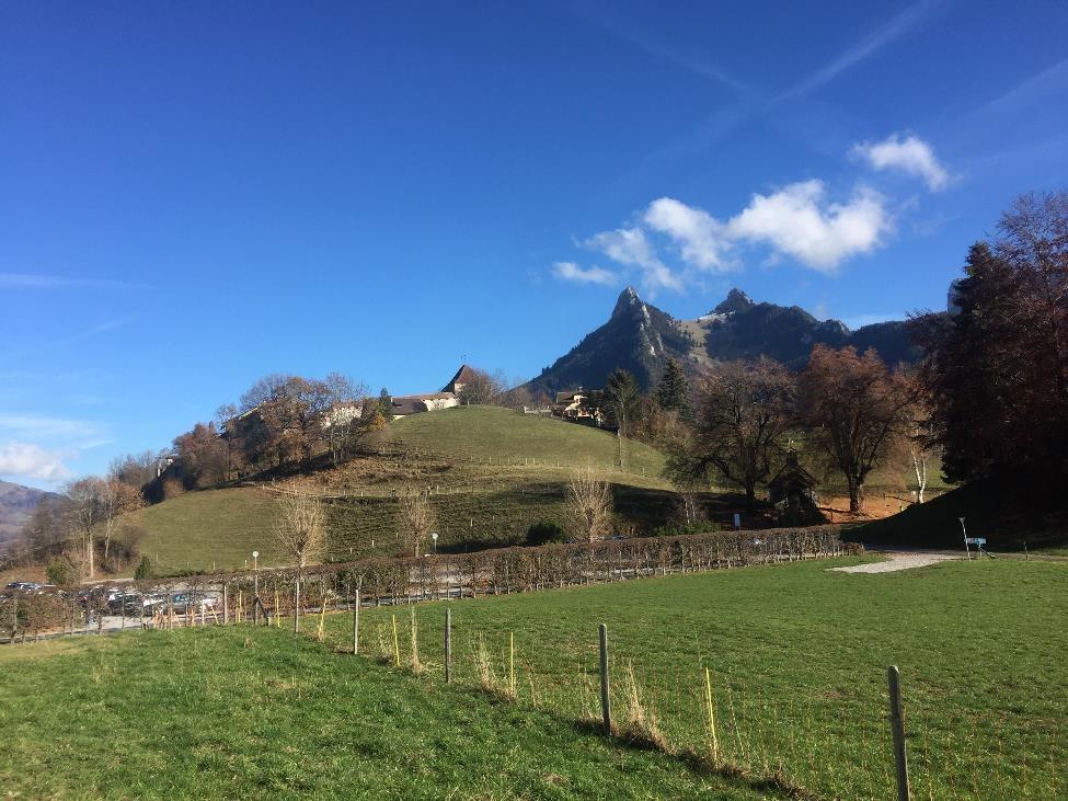 castlehill_web.jpg