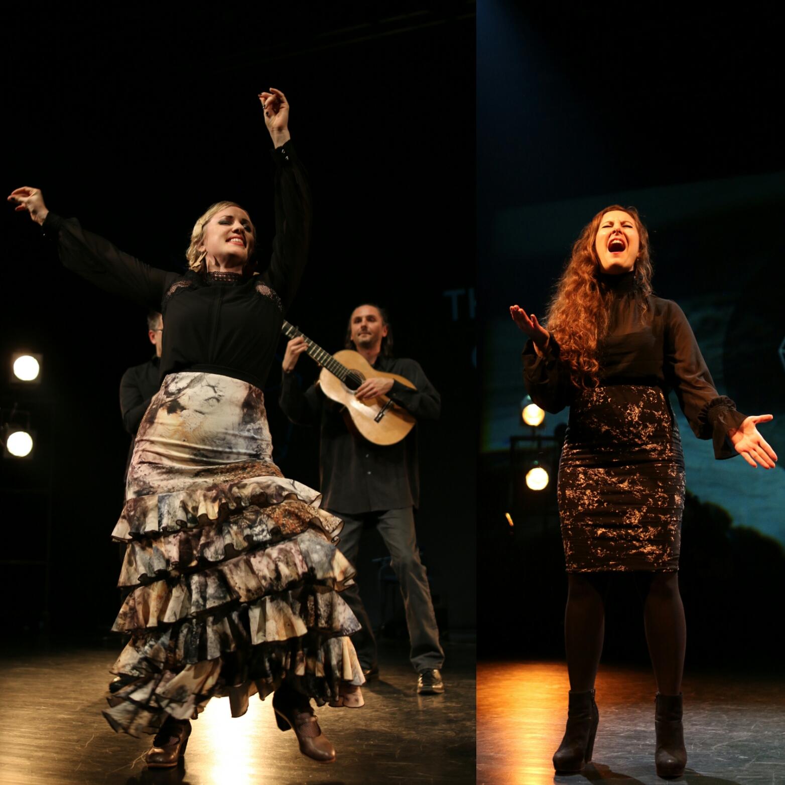 Flamencovisions.jpg