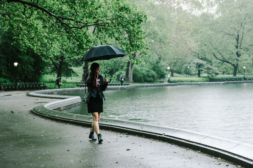 Rainy Day at Central Park