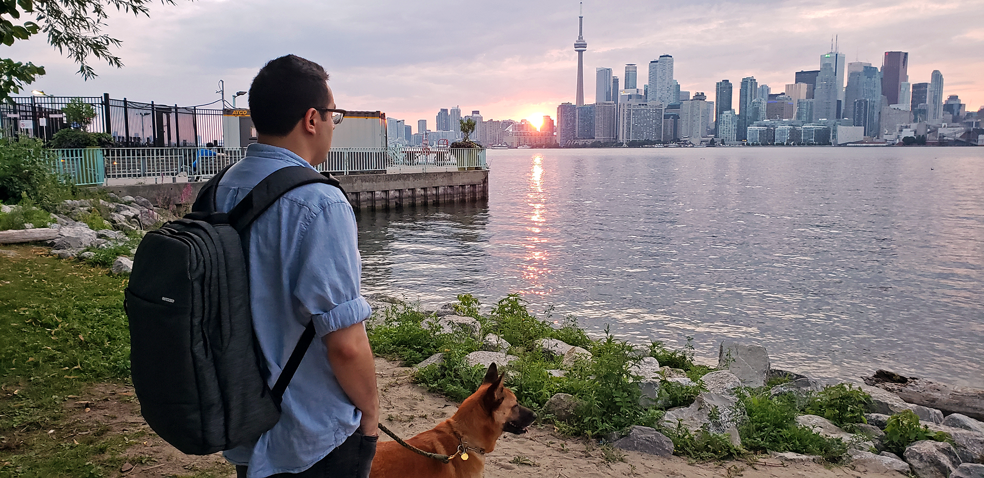 My fiancé and I took Decca to Toronto Island, to escape the commotion of the city and allow her to explore some semblance of nature.