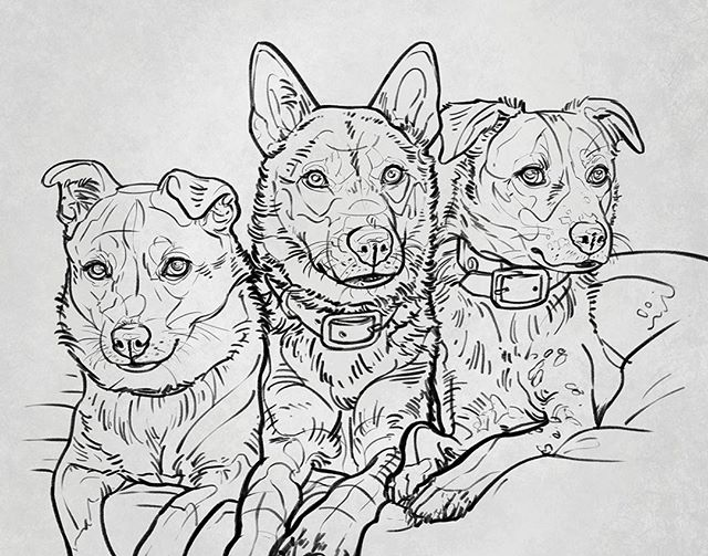 Here it is!!! 🔥 I finally got to paint fellow members of the Dong family, @elsie.aero.nova! The pups on the left (Elsie) and right (Aero) are Zappa's siblings, and Nova was recently adopted and we're so excited to meet her soon!⁠ ⁠ This is just the sketch, stay tuned tomorrow for another sneak peak at the process! 😊⁠ ⁠ #petportrait #instapet #instadog #instacat #instapainting #pet #pets #dogs #cats #painting #drawing #art #dogportrait #catportrait #dogart #animalart #animals #dogsofinstagram #catsofinstagram #petsofinstagram #petartist #custompetportrait #petportraitartist #digitalart #petpainting #doglover #furbaby #petportraits #torontodogs #dogmodel⁠