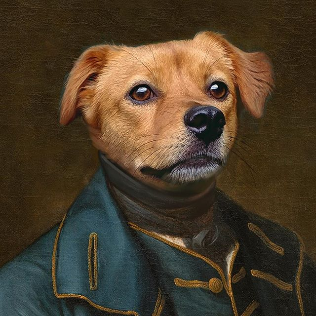 People have been asking me about royal pet portraits, so I figured what the heck- here's my take on Zappa! 🤴 What do you guys think? 😂 . . . ⁠#lovedogs #instapet #instadog #instacat #pet #pets #dogs #cats #catportrait #dogart #animalart #animals #dogsofinstagram #catsofinstagram #petsofinstagram #petartist #doglovers #petpainting #doglover #furbaby #muttsofinstagram #dogmom #adoptdontshop #rescuedogsofinstagram #puppylove #dogs_of_instagram⁠ #petportrait #petportraits #dogsofig