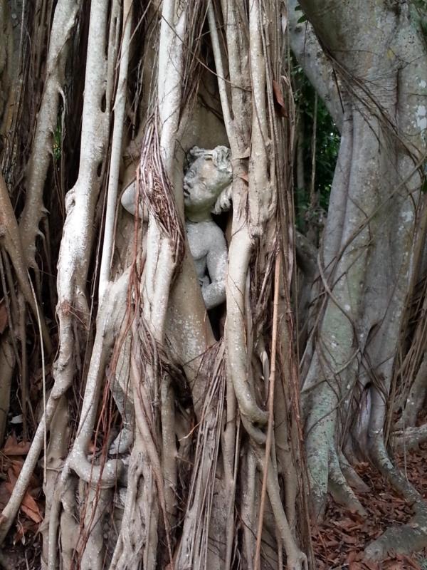Statue in banyan tree