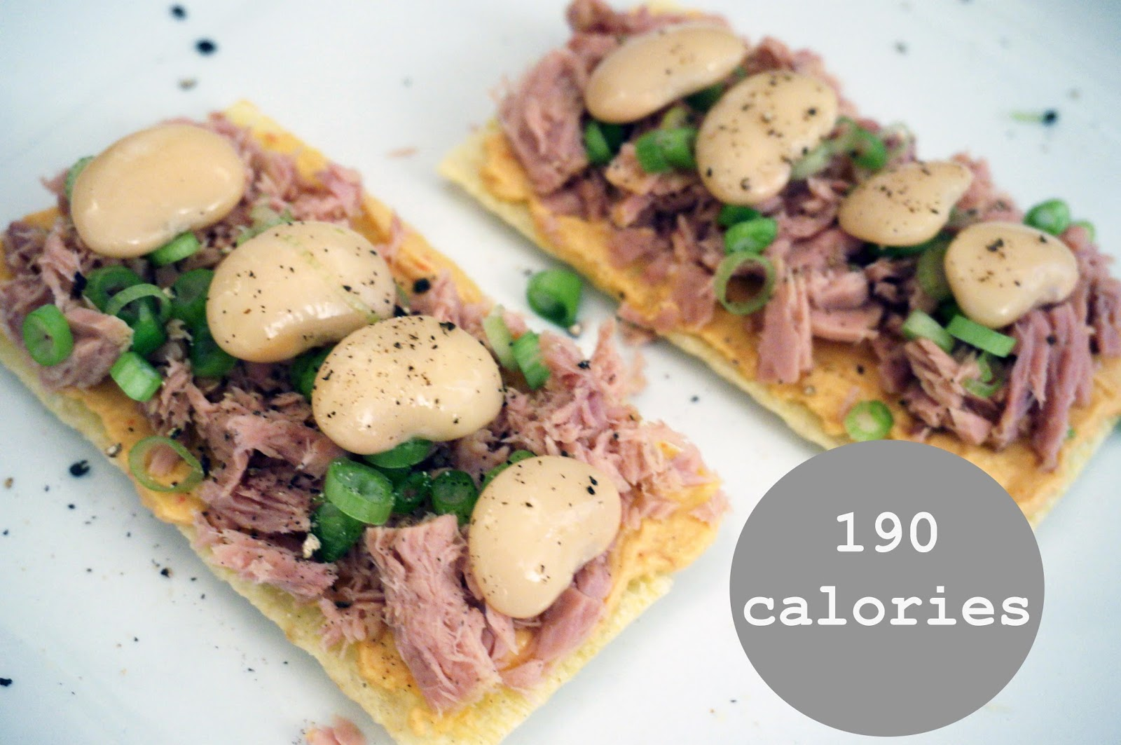 meg-made Fast Diet recipes - tuna crispbread