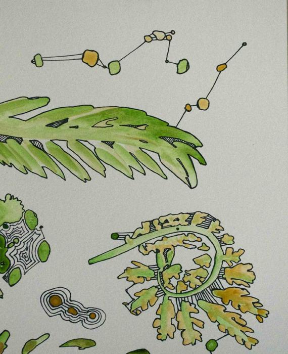 PLANT STUDY I