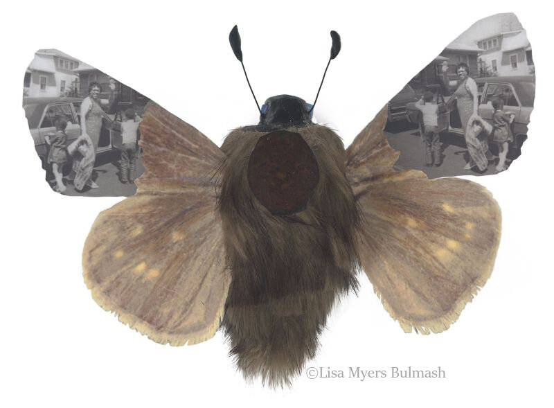 "Detail of dotted skipper-human hybrid, ""Rare & Exquisite #4"" by Lisa Myers Bulmash"
