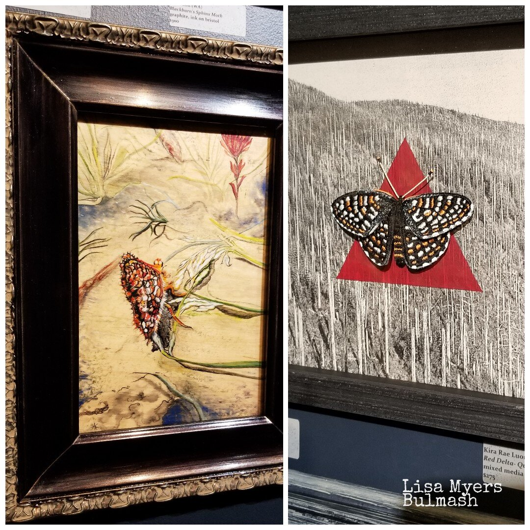 Checkerspot butterflies (which also appear in my collages) by Amber Anderson & Kira Rae Luongo