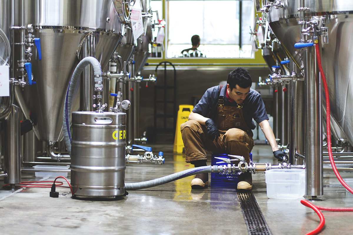 Brewer Brad Church harvesting yeast.