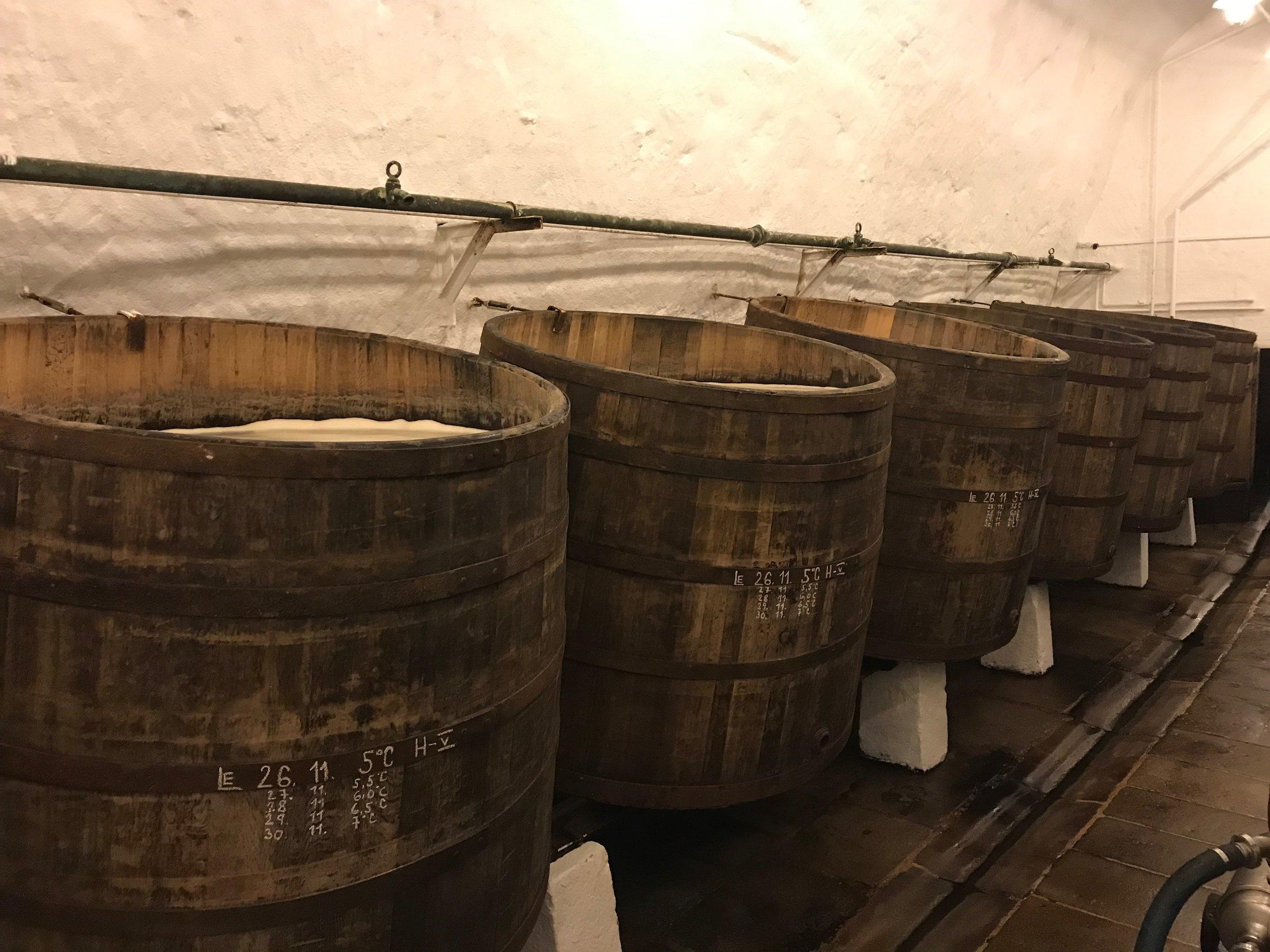 Open-top fermentation tanks in Czech Republic