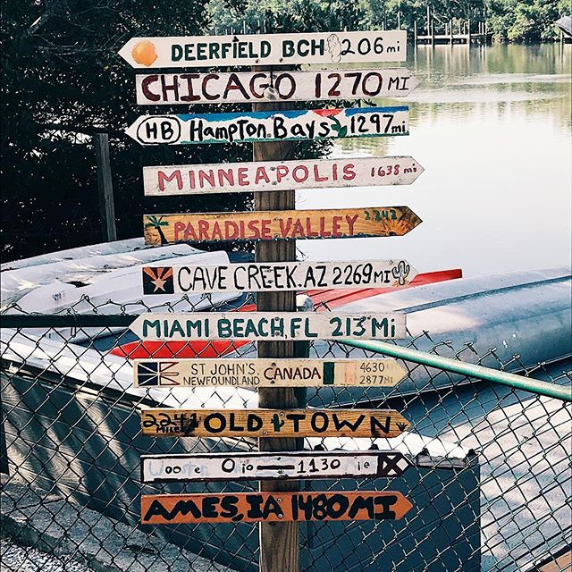 Where to? 🌴 • • • • #fashion #fblogger#fashionblogger #style #styleblogger #vsco #tampa #palmisland #summer #summertime #instacool #instasummer #florida
