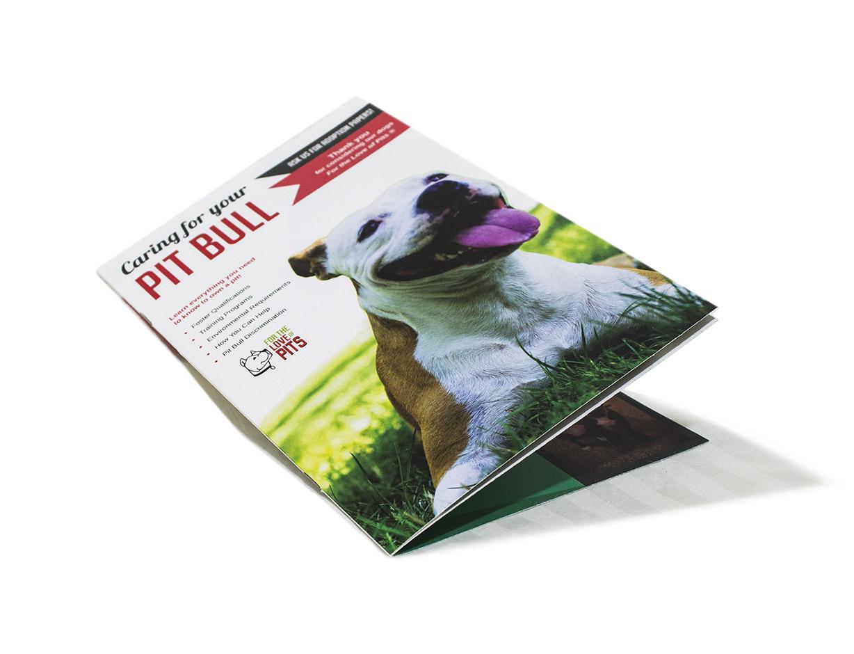 FTLOP Brochure Mock.jpg