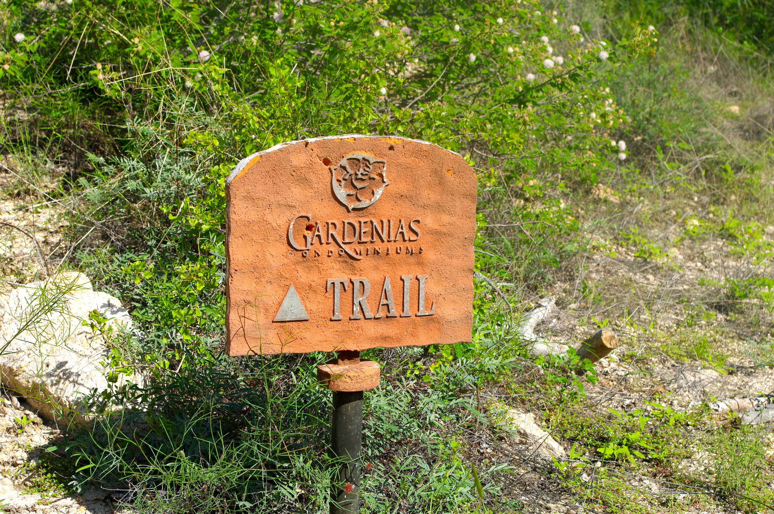 Hiking Trail for Golondrina 301