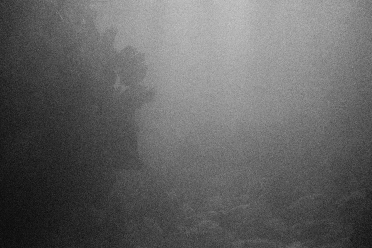 Seabed #1