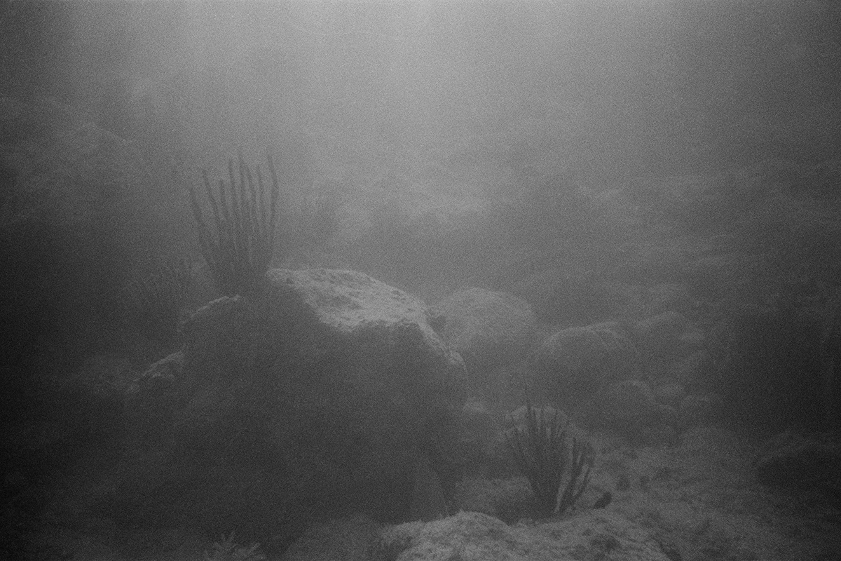 Seabed #2
