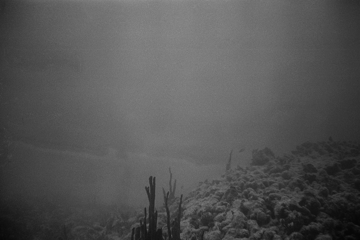 Seabed #6