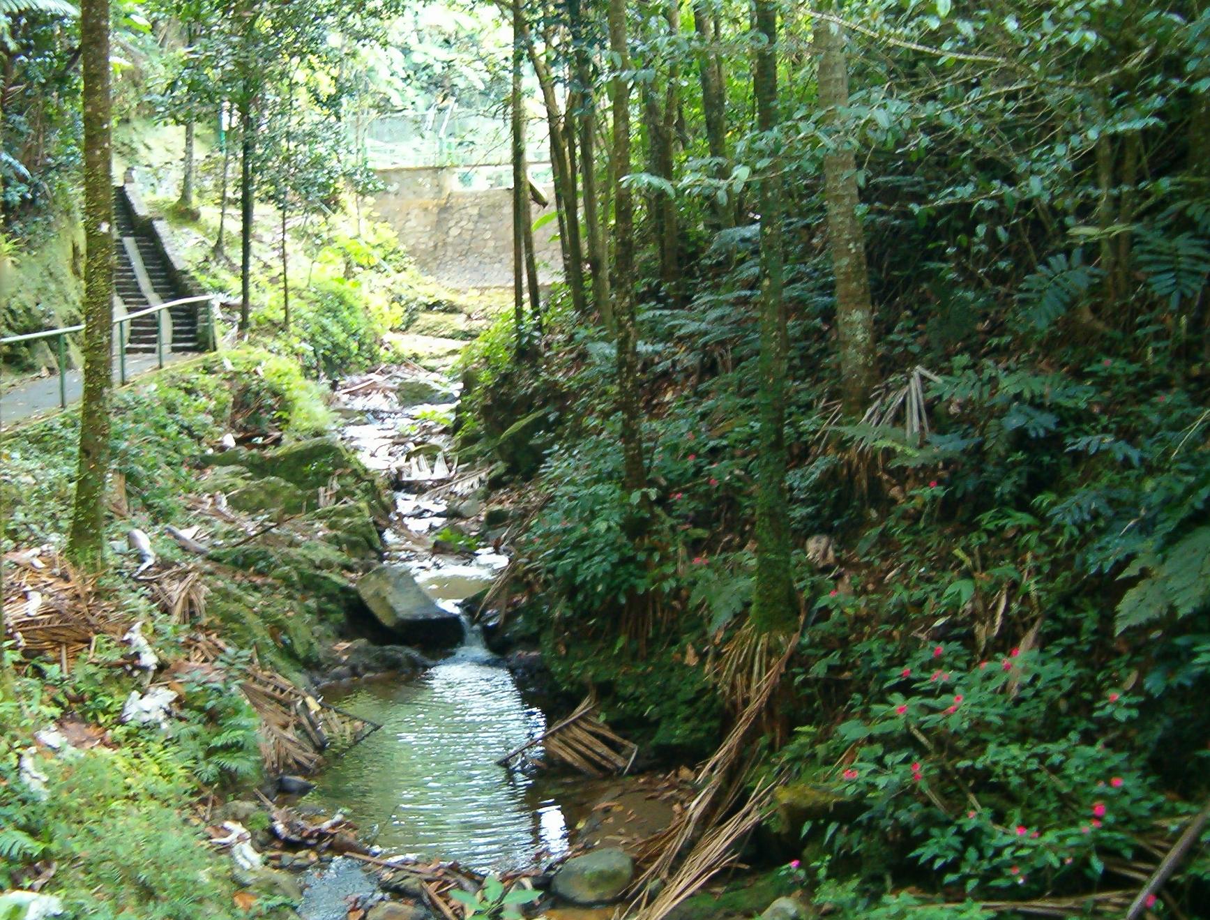 corredores-riparios-ecostahlia
