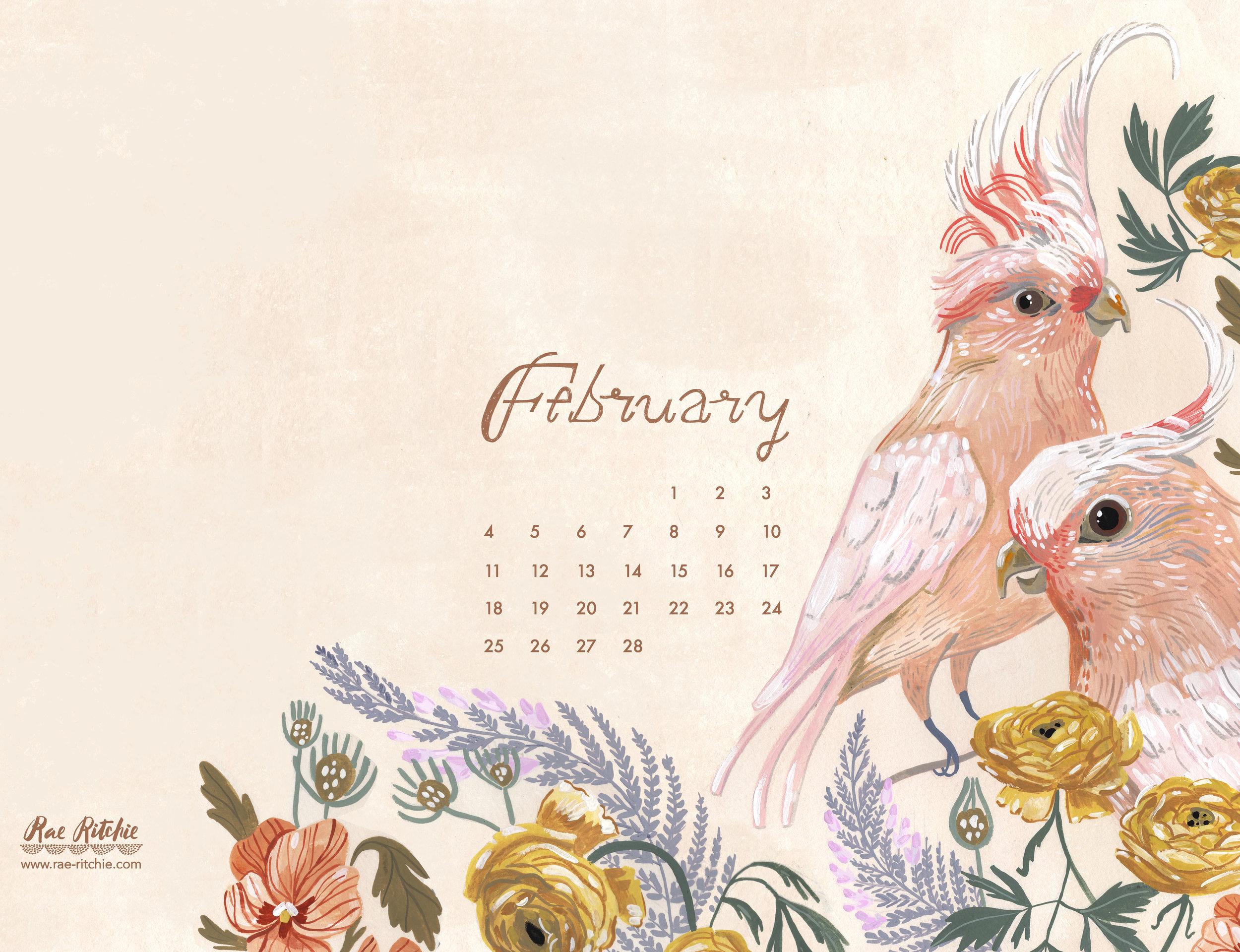 February18__Ipad.jpg